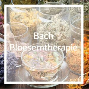Bach Bloesems