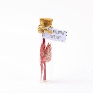 Droogbloem flesje roze